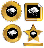 Gold and Black - Flea Royalty Free Stock Image