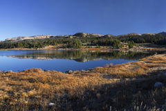 The gold and blue of fall at high elevation. Beautiful, cold Little Bear Lake near Beartooth Pass, Wyoming - elevation 9,557 ft Royalty Free Stock Image