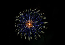 Gold and blue fireworks Stock Photos