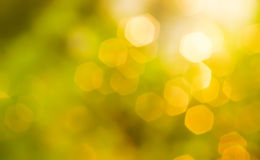 Gold bokeh Royalty Free Stock Photos