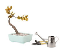 Gold Bonsai trees with watering pot.3D illustration. Royalty Free Stock Photography