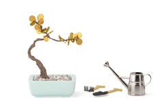 Gold Bonsai trees with watering pot.3D illustration. Stock Image