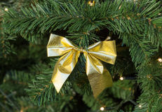 Gold bow on a Christmas fir tree decoration Stock Image