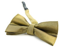 Gold bow tie isolated against white Stock Photography