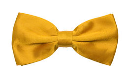 Gold Bow Tie. Yellow Tuxedo Bowtie Isolated on a White Background Stock Images