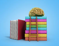 Gold brain training concept lies on a pile of books and a wooden. Staircase next to them 3d render on a gradient Stock Image