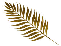 Gold branch of fern Stock Photo