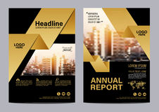 Gold Brochure Layout design template. Annual Report Flyer Leaflet cover Presentation Modern background. illustration vector in A4 vector illustration