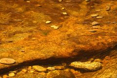 Gold and brown water from moors Royalty Free Stock Photography