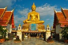 Gold buddha Stock Image