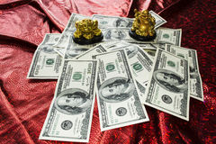 Gold Buddha and gold frog on money Stock Photos
