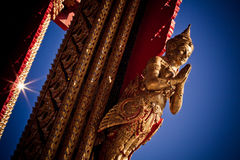 Gold Buddha Image. Buddha Image on Thai Temple royalty free stock image