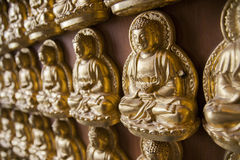 Gold buddha pattern Royalty Free Stock Photography