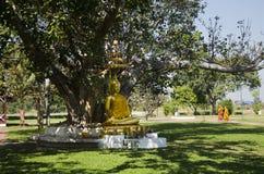 Gold-Buddha-Statue im Garten an im Freien Stockbild