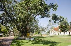 Gold-Buddha-Statue im Garten an im Freien Lizenzfreies Stockfoto