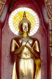 Gold buddha statue mirror background Royalty Free Stock Photography
