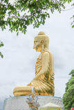 Gold Buddha statue with tree frame Stock Image