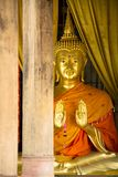 Gold buddha statue and wood  pole Royalty Free Stock Images