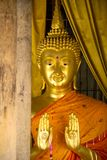 Gold buddha statue and wood  pole Royalty Free Stock Photo