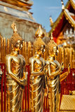 Gold Buddha statues in Wat Phra That Doi Suthep Royalty Free Stock Photography