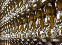 Gold Buddha on the wall Royalty Free Stock Photography