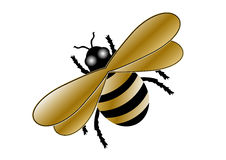 Gold Bumblebee Royalty Free Stock Image