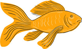 Gold Butterfly Koi Swimming Drawing Stock Photos