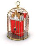 Gold Cage with Cigarette Pack (clipping path included) Stock Images