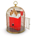 Gold Cage with Cigarette Pack (clipping path included) Royalty Free Stock Photos