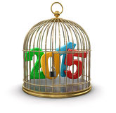 Gold Cage with 2015 (clipping path included) Stock Photography