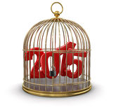 Gold Cage with 2015 (clipping path included). Gold Cage with 2015. Image with clipping path Royalty Free Stock Photography
