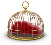 Gold Cage with Covering Car (clipping path included) Stock Image