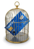 Gold Cage with Credit Card (clipping path included) Royalty Free Stock Photo