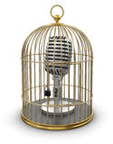 Gold Cage with Microphone (clipping path included) Royalty Free Stock Photo
