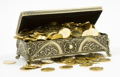 Gold casket and gold coins Stock Photography