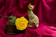 Gold cat and yellow roses Royalty Free Stock Image