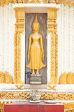 Gold cement buddha on wall Stock Photos