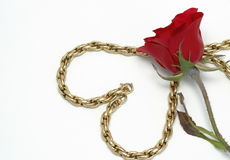 Gold chain. A gold chain formed az heart Stock Photography