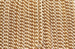 Gold Chain Necklace. Isolated macro closeup Stock Photography