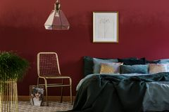 Gold chair in bedroom interior. Lamp above gold chair next to green bed against red wall with poster in bedroom interior with plant stock photos