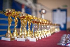 Gold champion trophies and medals lined up in rows. Selective focus stock photo