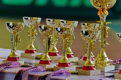 Gold champion trophies and medals lined up in rows. Gold sports cups on the table. stock photo
