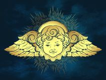 Gold cherub cute winged curly smiling baby boy angel with rays of linght over blue sky background. Hand drawn design or fabric pri Royalty Free Stock Image