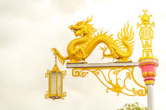 Gold chinese dragon. Stock Image