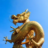 Gold chinese dragon of thailand Stock Image