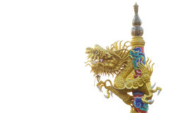 Gold chinese dragon. On white background Stock Images