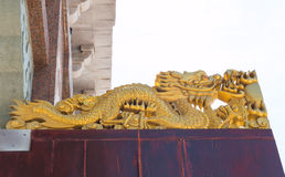 Gold Chinese Dragon on white Background Royalty Free Stock Photography