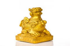 Gold chinese lion. In white background Royalty Free Stock Photography