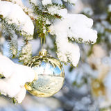 Gold Christmas Ball on Christmas tree branch covered with Snow. Stock Photo