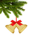 Gold Christmas bells and red bow on ribbon on tree branch isolat Royalty Free Stock Photography